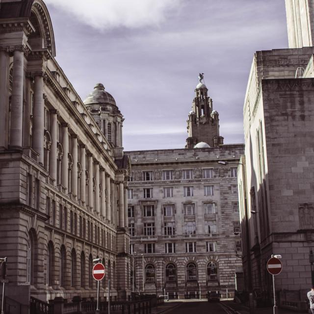 """City Buildings"" stock image"