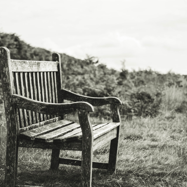 """Old Bench"" stock image"