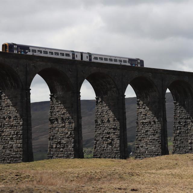 """Ribblehead viaduct."" stock image"
