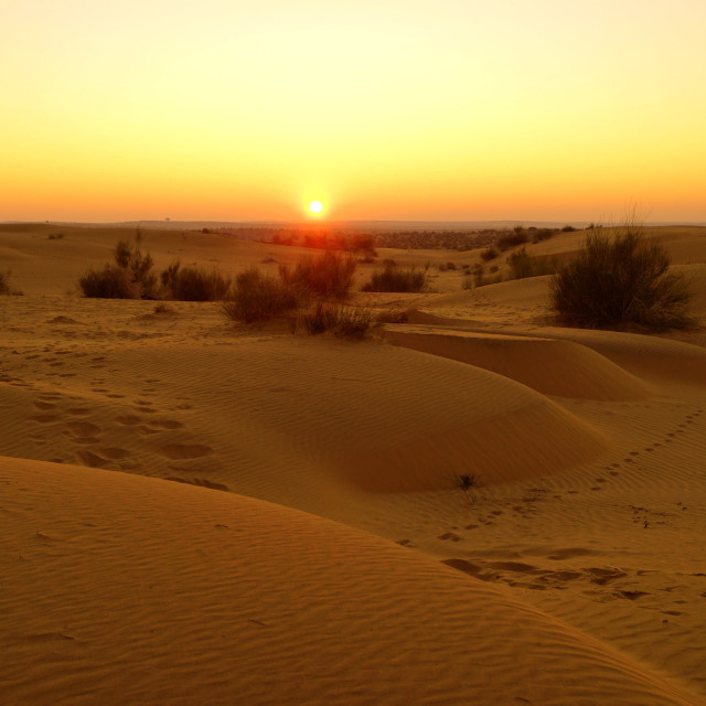 """Sunrise at thar desert"" stock image"