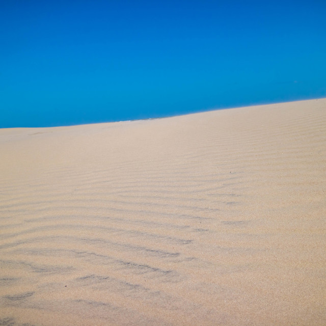 """""""A very soft fine sandy beach in South Padre Island, Texas"""" stock image"""