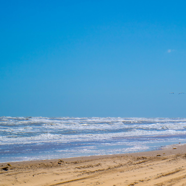 """""""A beautiful soft and fine sandy beach along the gulf coast of Texas in South Padre Island, Texas"""" stock image"""
