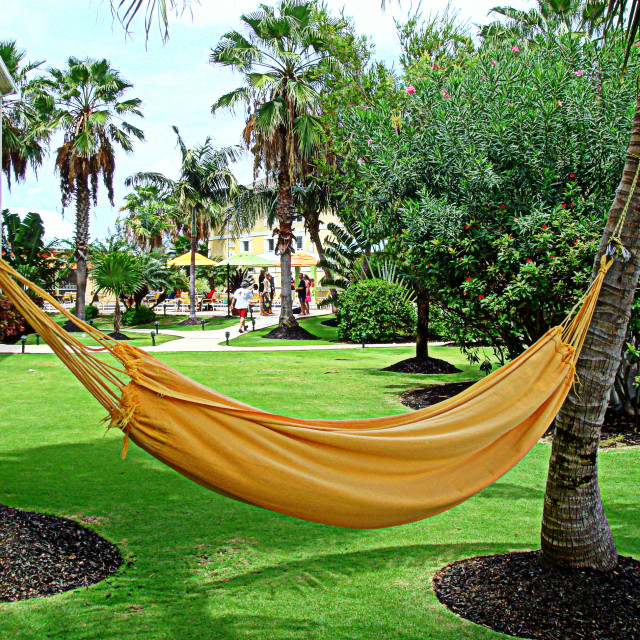 """Your comfy hammock is waiting for you"" stock image"