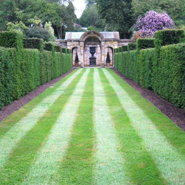 """""""A garden corridor at Hever Castle"""" stock image"""