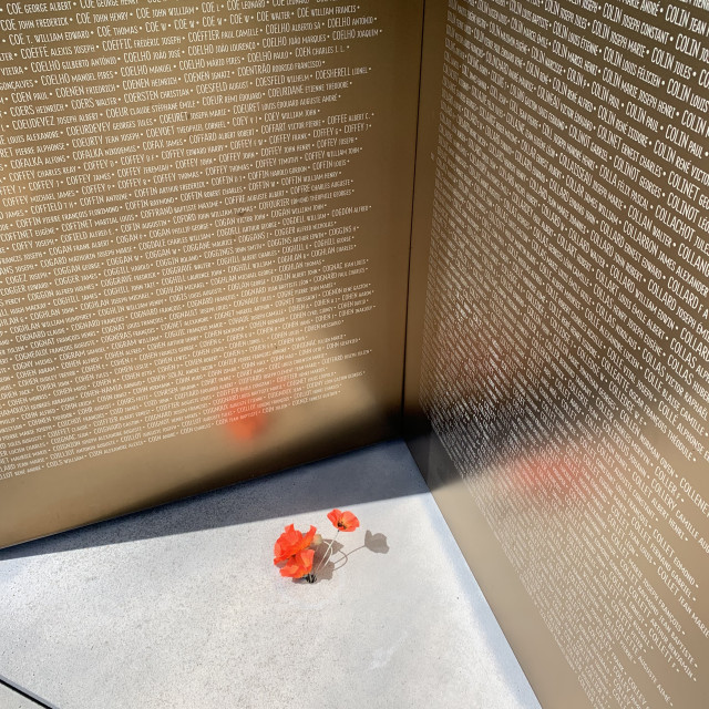 """""""The Ring of Remembrance"""" stock image"""