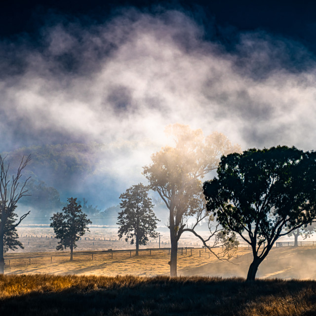 """Cold Misty Morning"" stock image"