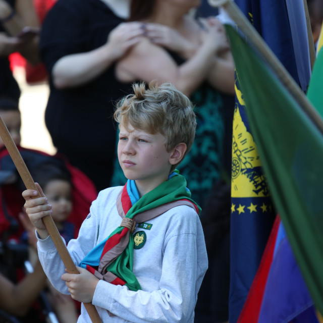 """Scout in a Parade"" stock image"