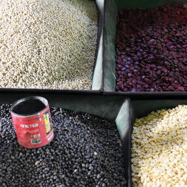 """Bean Choice"" stock image"