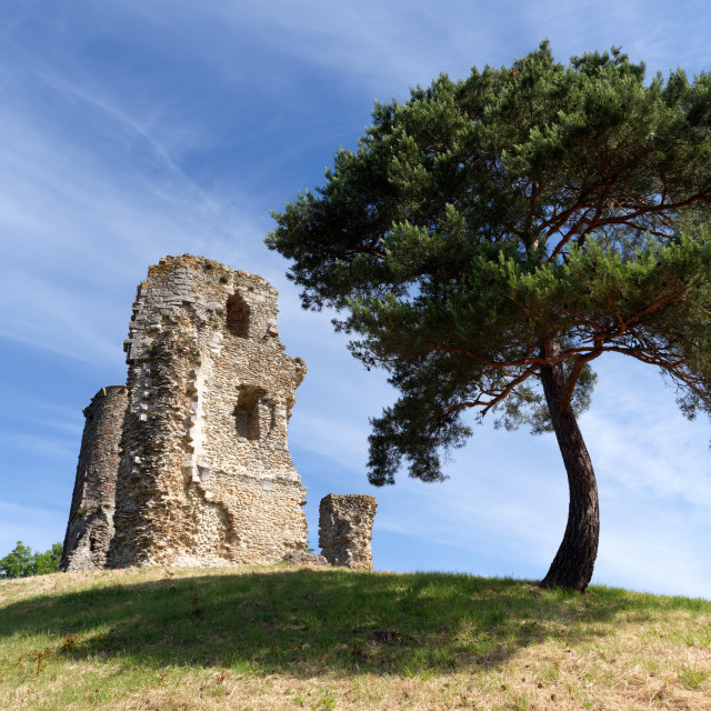 """""""Anne of Brittany's tower"""" stock image"""