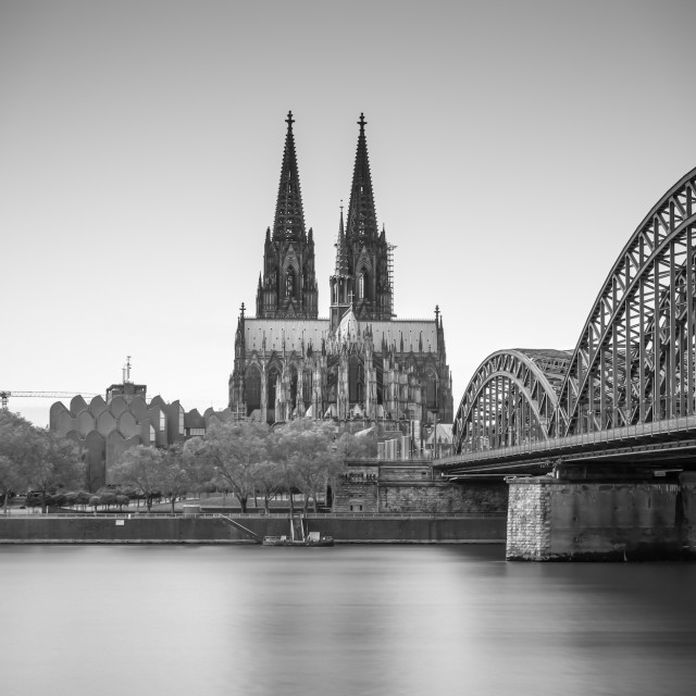 """""""Cologne Dom Cathedral"""" stock image"""
