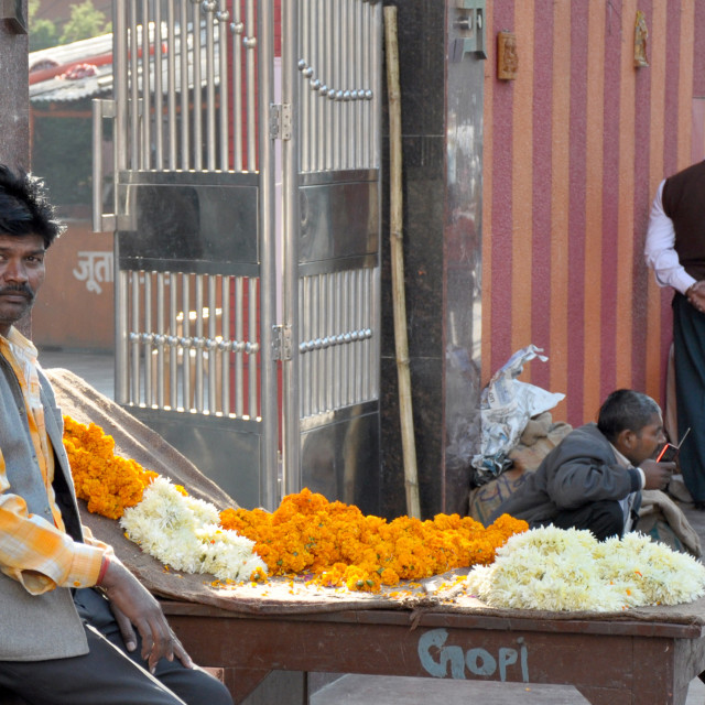"""""""A Flower Seller"""" stock image"""