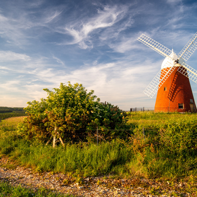"""Halnaker Windmill"" stock image"