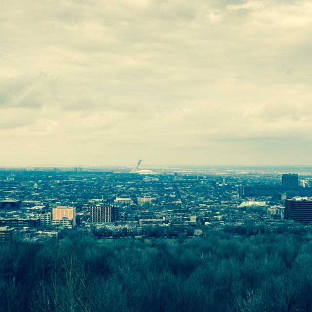 """""""View of the city of Montreal with the Olympic Stadium (centre) i"""" stock image"""