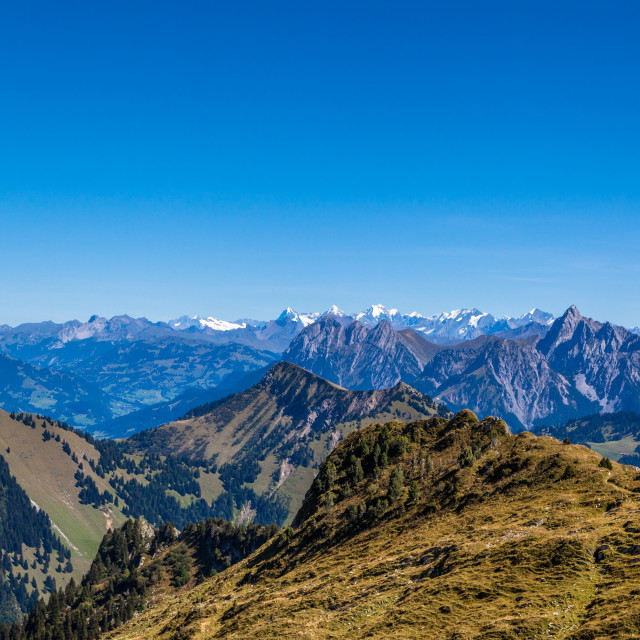 """""""View of the Swiss Alps from Rochers-de-Naye mountain near Mountr"""" stock image"""