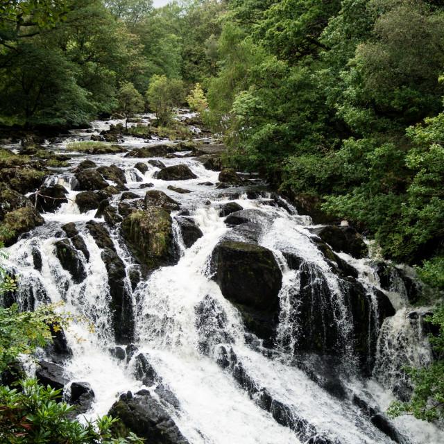 """""""Swallow Falls (Rhaeadr Ewynnol), Betws-y-Coed,, Conwy, North Wales, UK"""" stock image"""