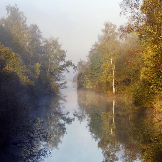 """""""Foggy lake"""" stock image"""