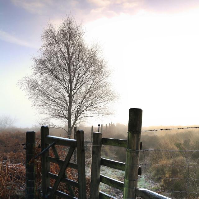 """Derbyshire Dawn"" stock image"