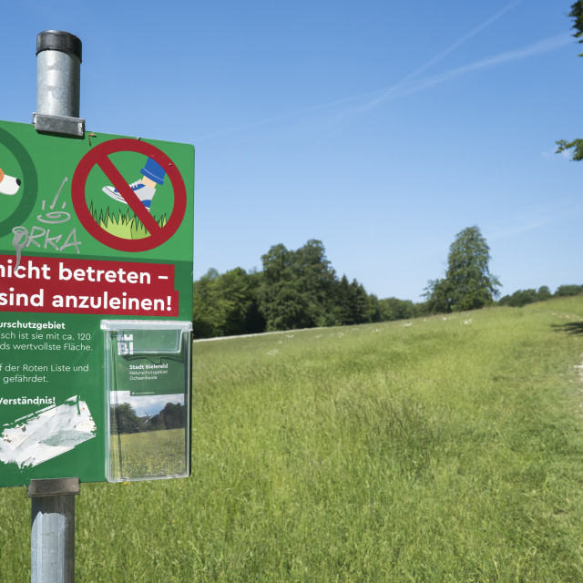 """protected area Ochsenheide"" stock image"