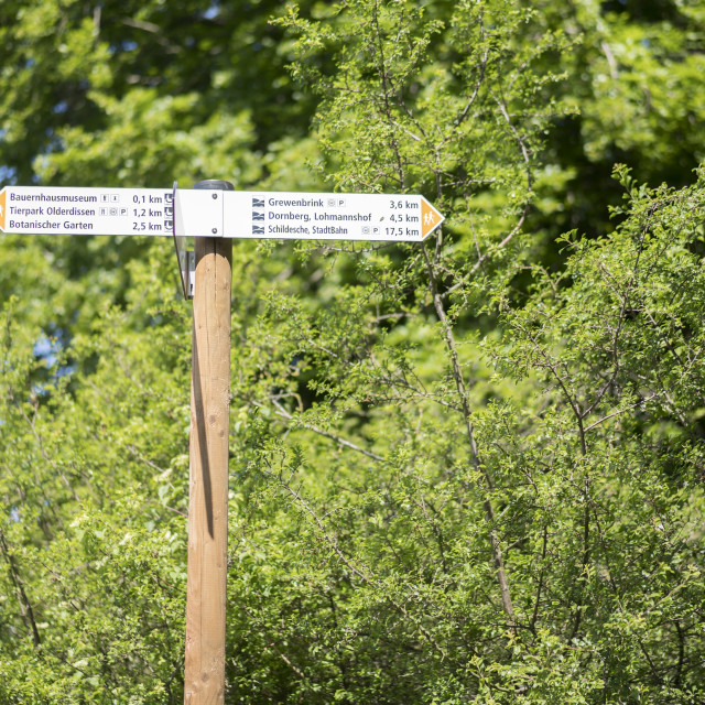 """""""Teutoburger Wald Forest hiking trail signposting"""" stock image"""