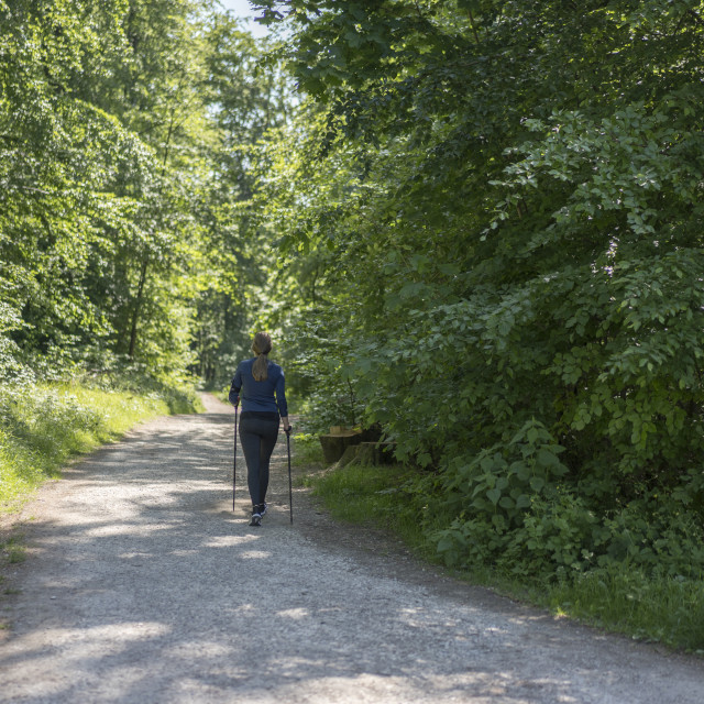 """""""Nordic Walker in Teutoburger Wald Forest"""" stock image"""