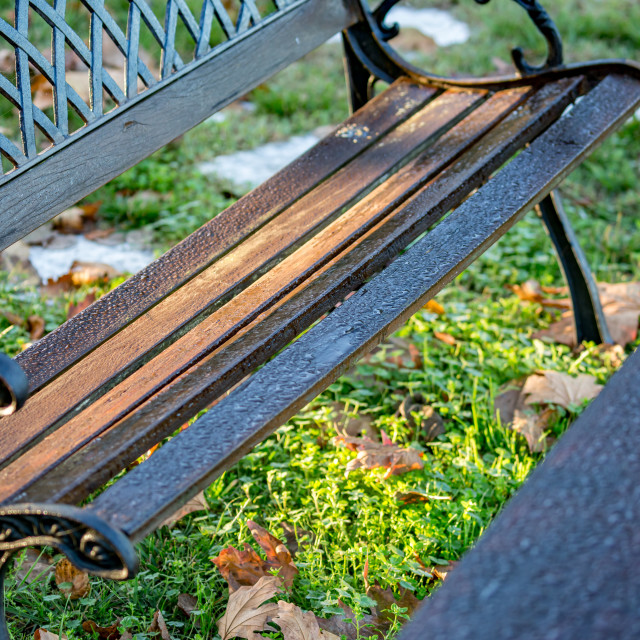 """""""Water drops after rain on wooden bench"""" stock image"""