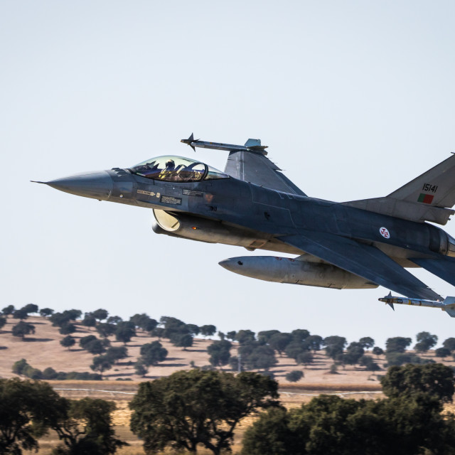 """""""F-16 Fighting Falcon of the Portuguese Air Force"""" stock image"""