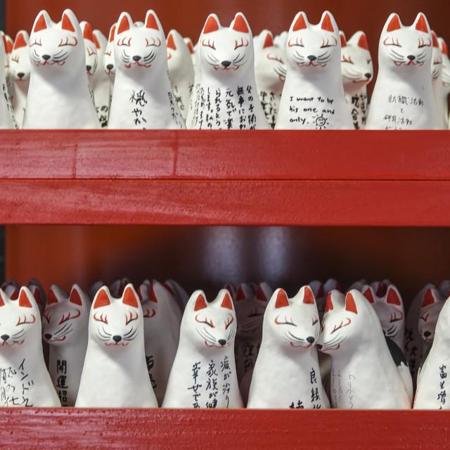 """Japanese lucky cat models"" stock image"