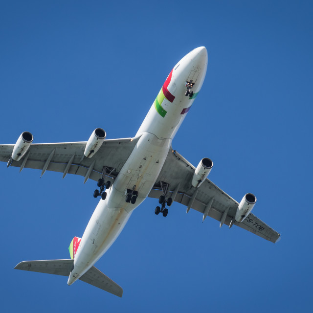 """Airliner Airbus A340 CS-TOB of TAP Air Portugal landing"" stock image"