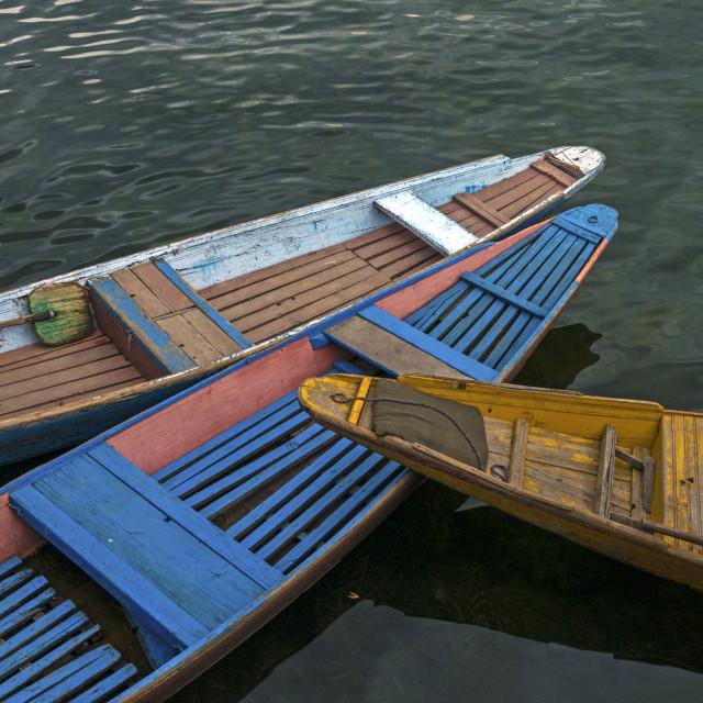 """""""Shikara Boats at Dal Lake, Srinagar"""" stock image"""