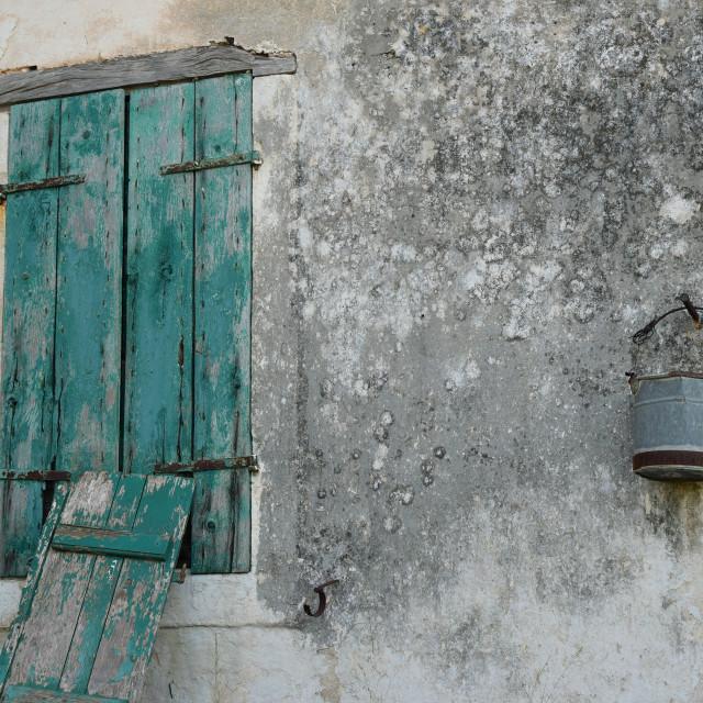 """""""rusty bucket on moldy wall"""" stock image"""
