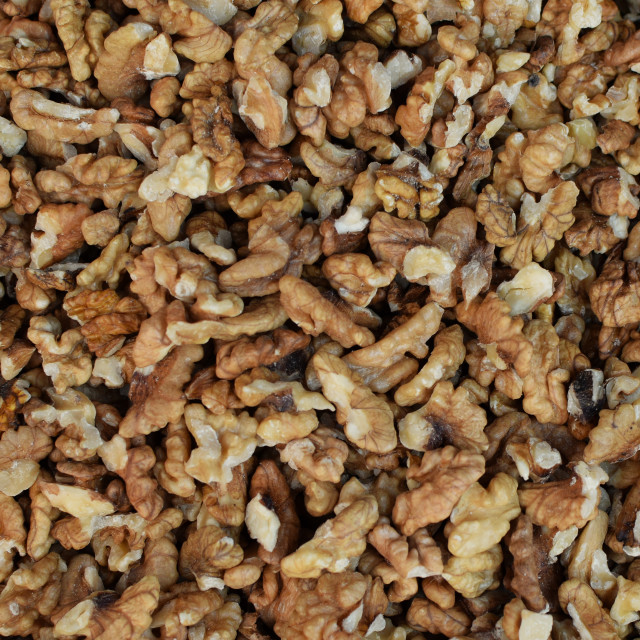 """shelled walnuts food background"" stock image"