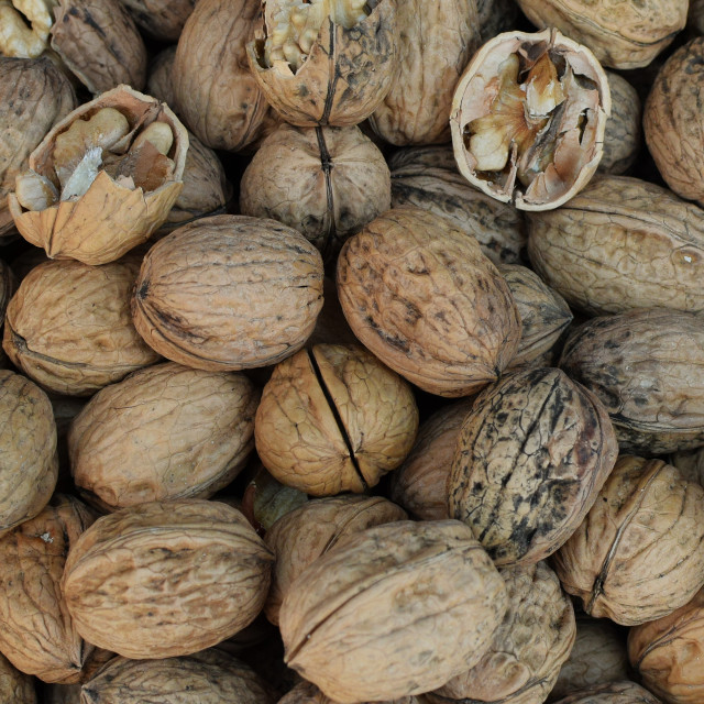 """""""walnuts with shell background texture"""" stock image"""