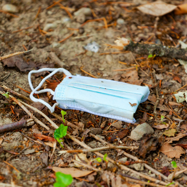 """Facial surgical mask used and thrown away on the ground in the park. True and..."" stock image"