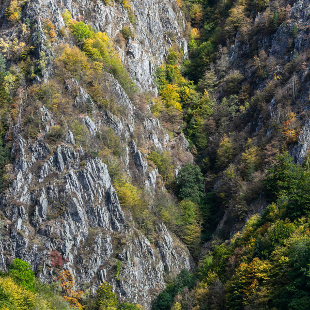 """Rock cliff"" stock image"