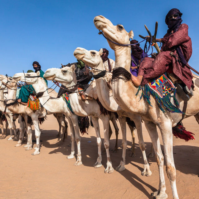 """""""Tuareg nomads on camels"""" stock image"""