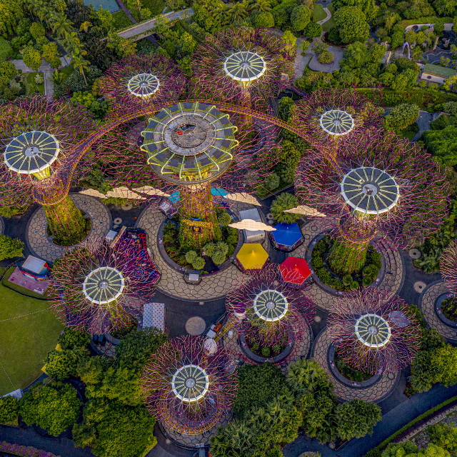 """""""Supertrees Grove Aerial"""" stock image"""
