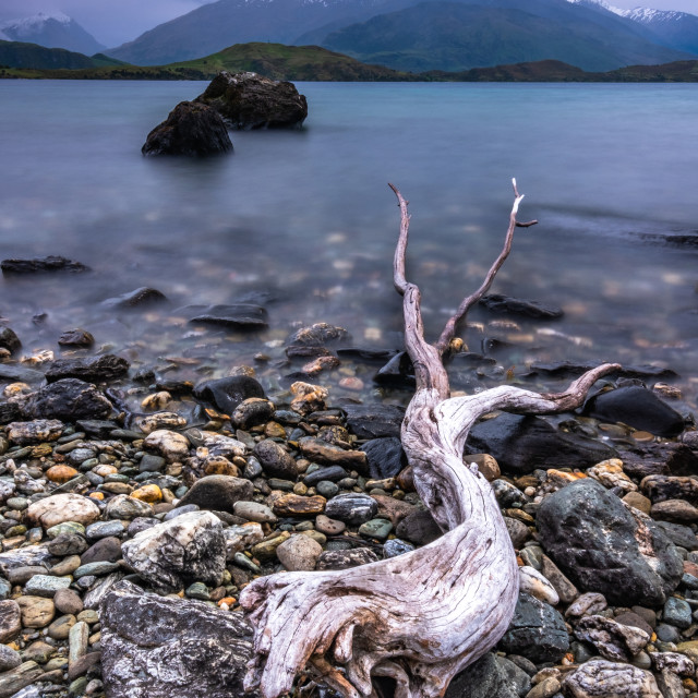 """DRIFTWOOD AND THE REMARKABLES"" stock image"