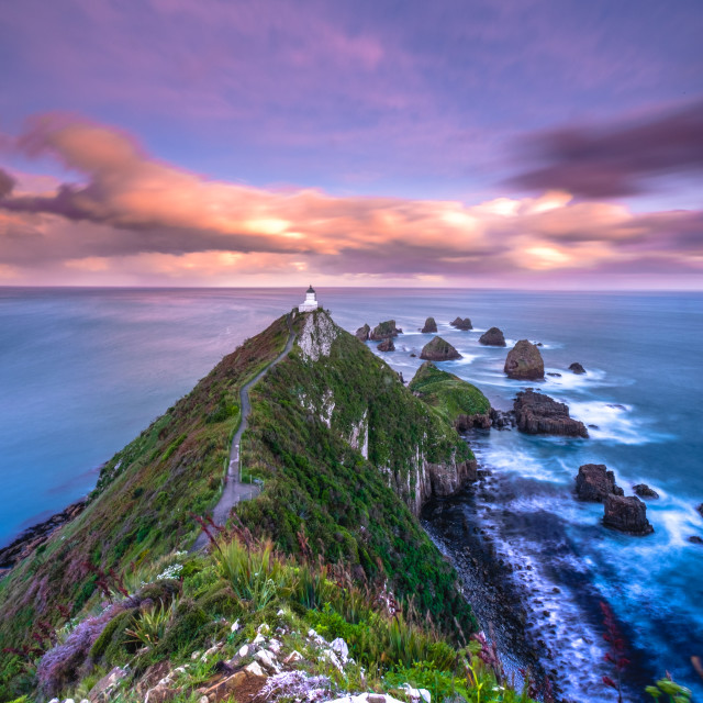 """Sunset at Nugget Point Lighthouse"" stock image"