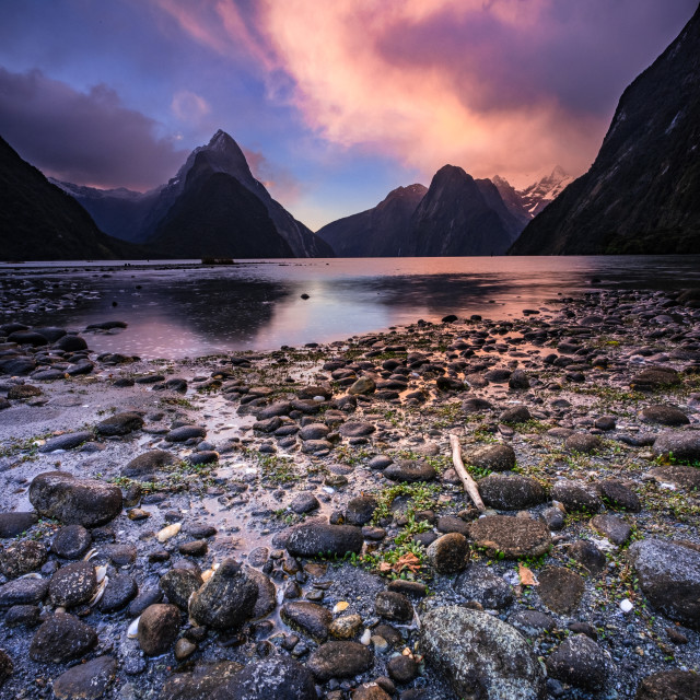 """Sunset at Milford Sound"" stock image"