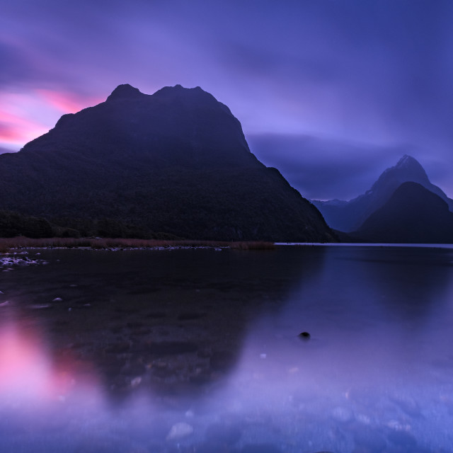 """Purple Sunset at Milford Sound"" stock image"