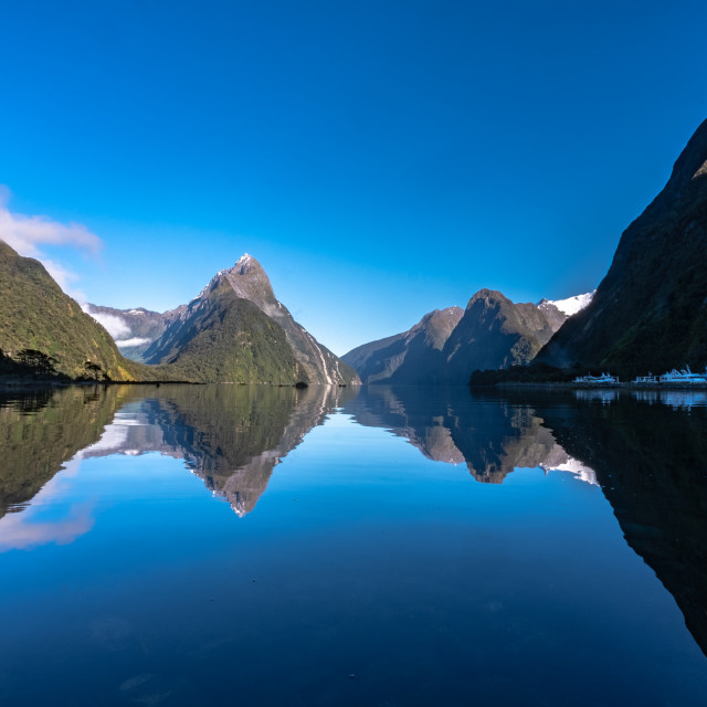 """Amazing reflections of Milford Sound early morning"" stock image"