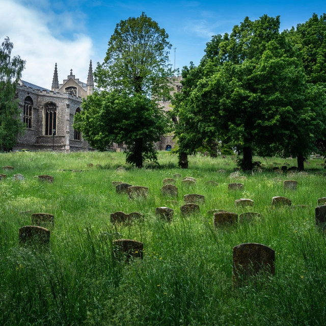 """""""St Mary's Church and graveyard in Bury St Edmunds"""" stock image"""