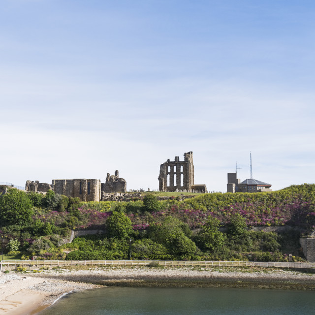 """""""Tynemouth Priory and castle with coast guard station. U"""" stock image"""