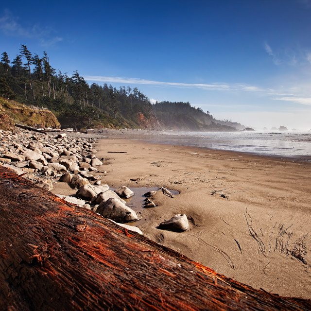 """Indian Beach in Oregon"" stock image"