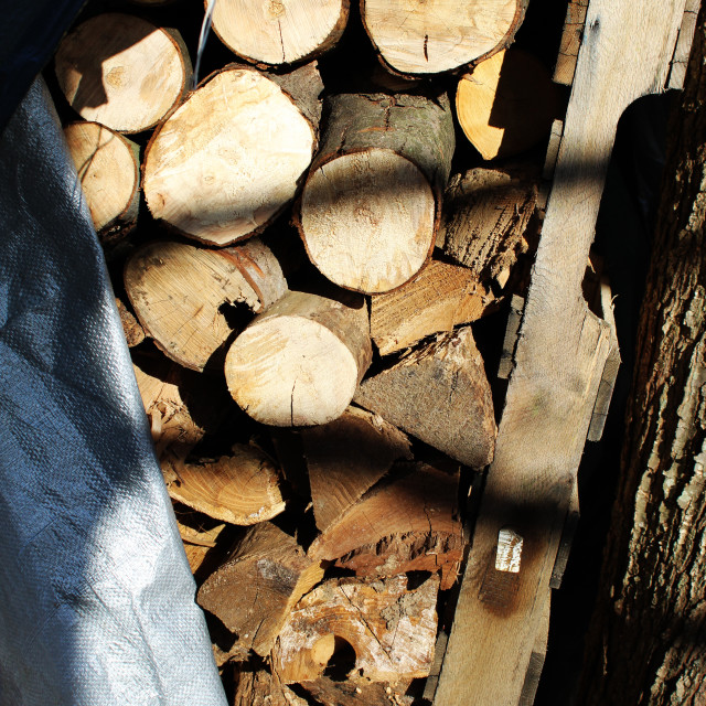 """""""stack of wood"""" stock image"""
