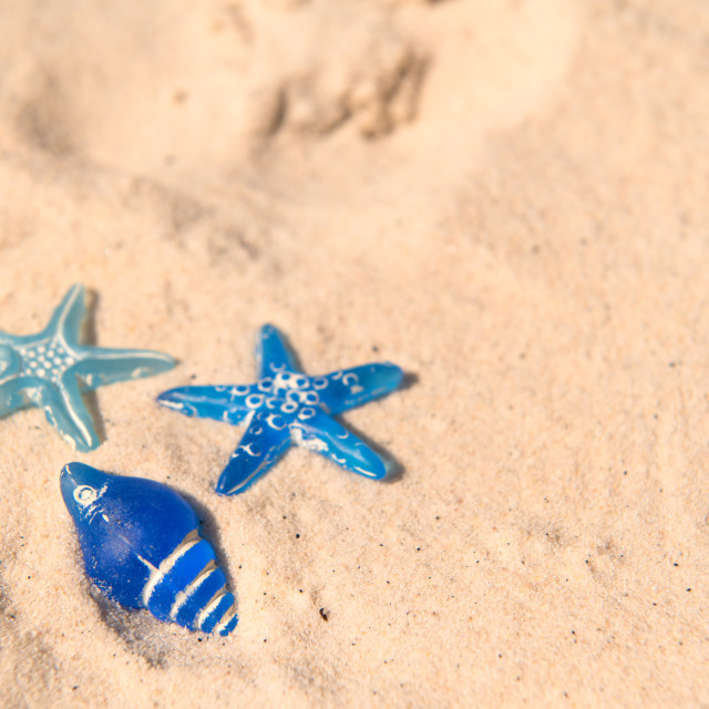 """Blue Star fish at the beach"" stock image"