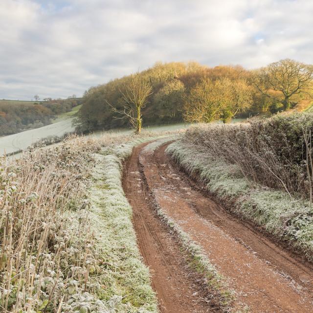"""""""Glazegate Lane - Winter morning"""" stock image"""