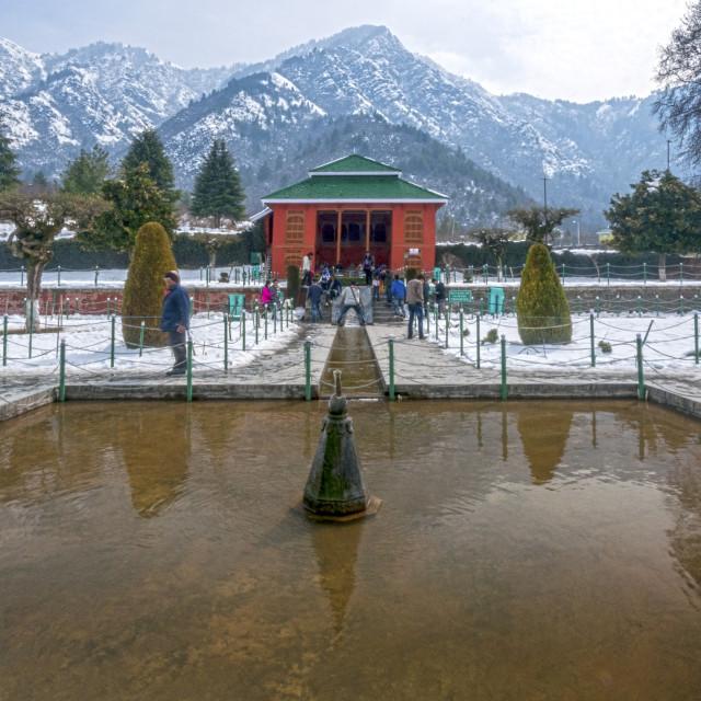 """The Mughal Garden, Cheshmashahi, Srinagar."" stock image"