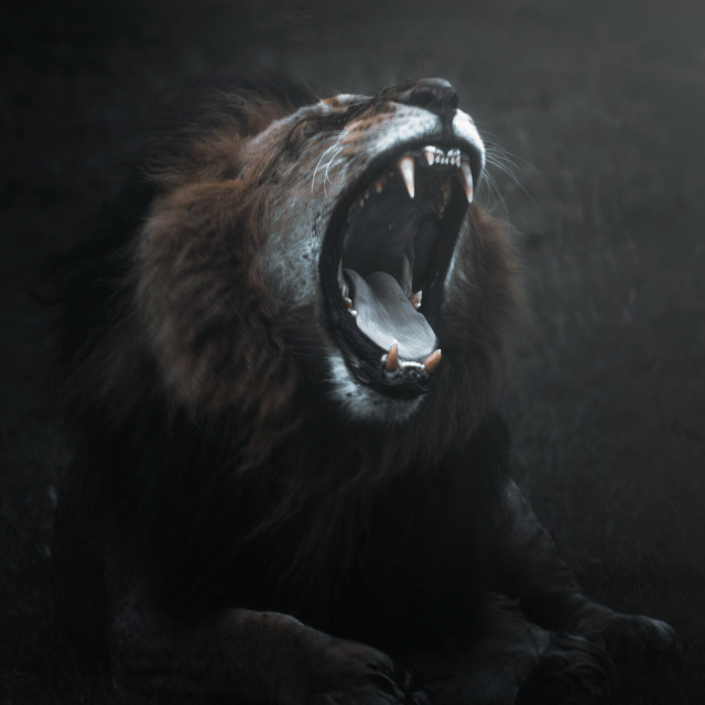 """""""Mighty Roar"""" stock image"""