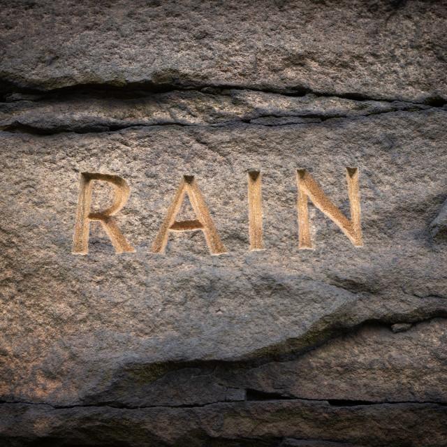 """""""My Nature - Rain"""" stock image"""